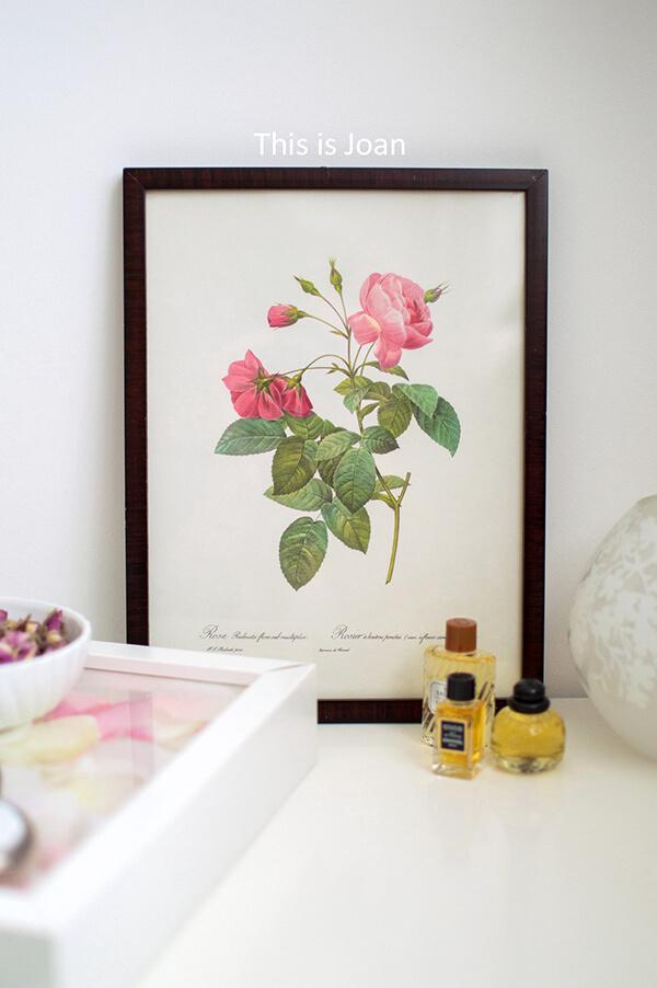 Botanische tekening in schilderij