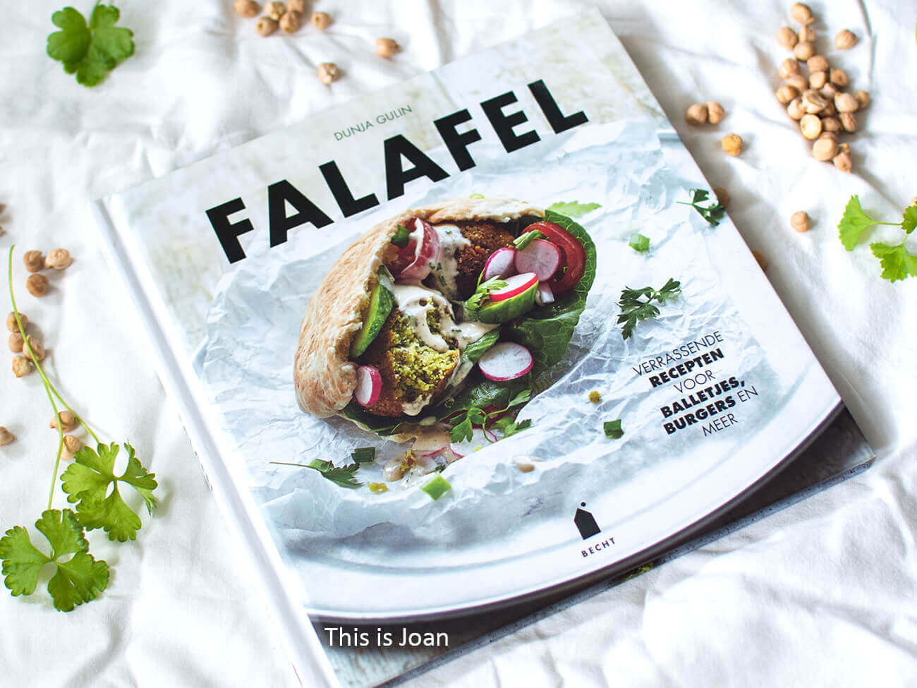 Falafel kookboek Dunja Gulin
