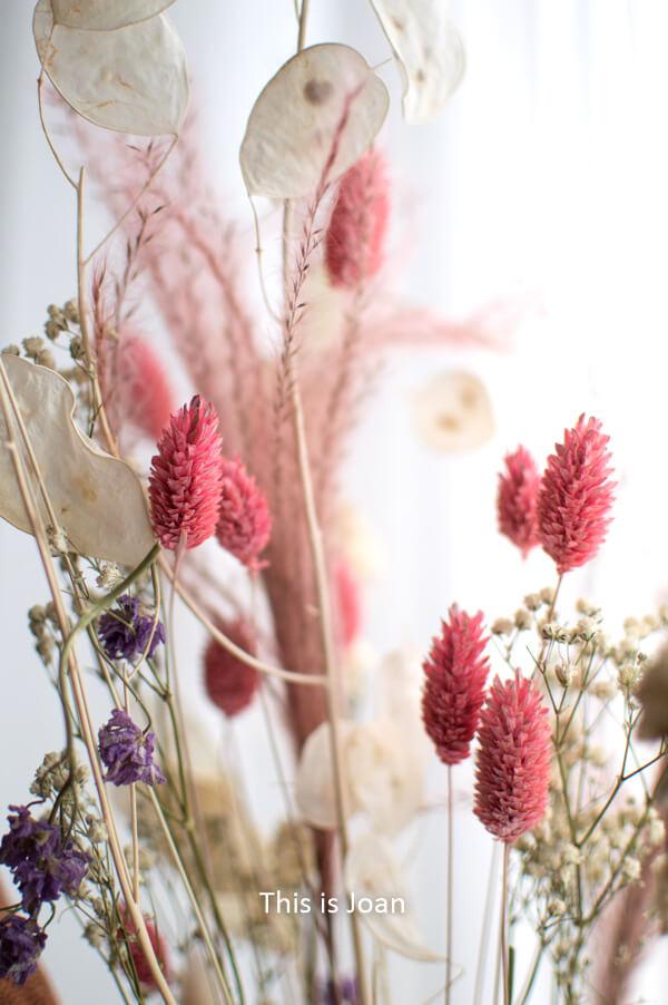 Droogbloemen Flower Feast